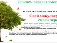 Сдай макулатуру спаси дерево